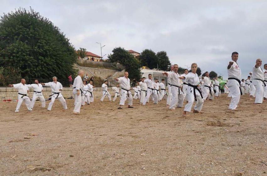 Karateka de la 3 cluburi iesene au participat la un stagiu de pregatire organizat de maestrului Vladimir Jorga – 9 DAN